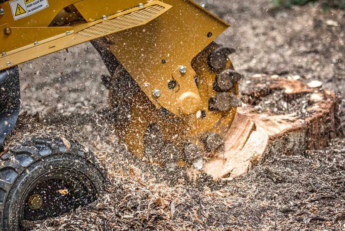 stump grinder rental baton rouge
